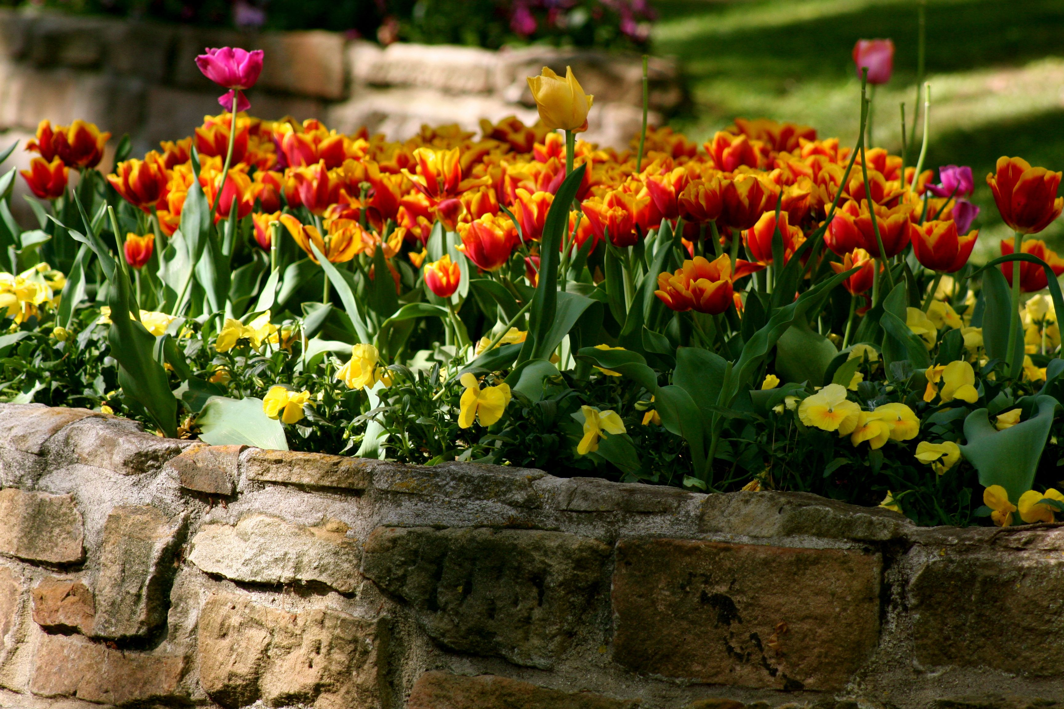 how to start planting earlier in spring in zone 3